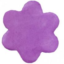 Blossom Petal Dust- Amethyst