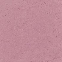 Elite Color Baby Pink Dust, 2.5 grams