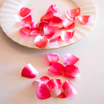 Edible Rose Petals - Cerise Pink and White