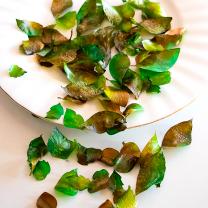 Edible Rose Petals - Leaves